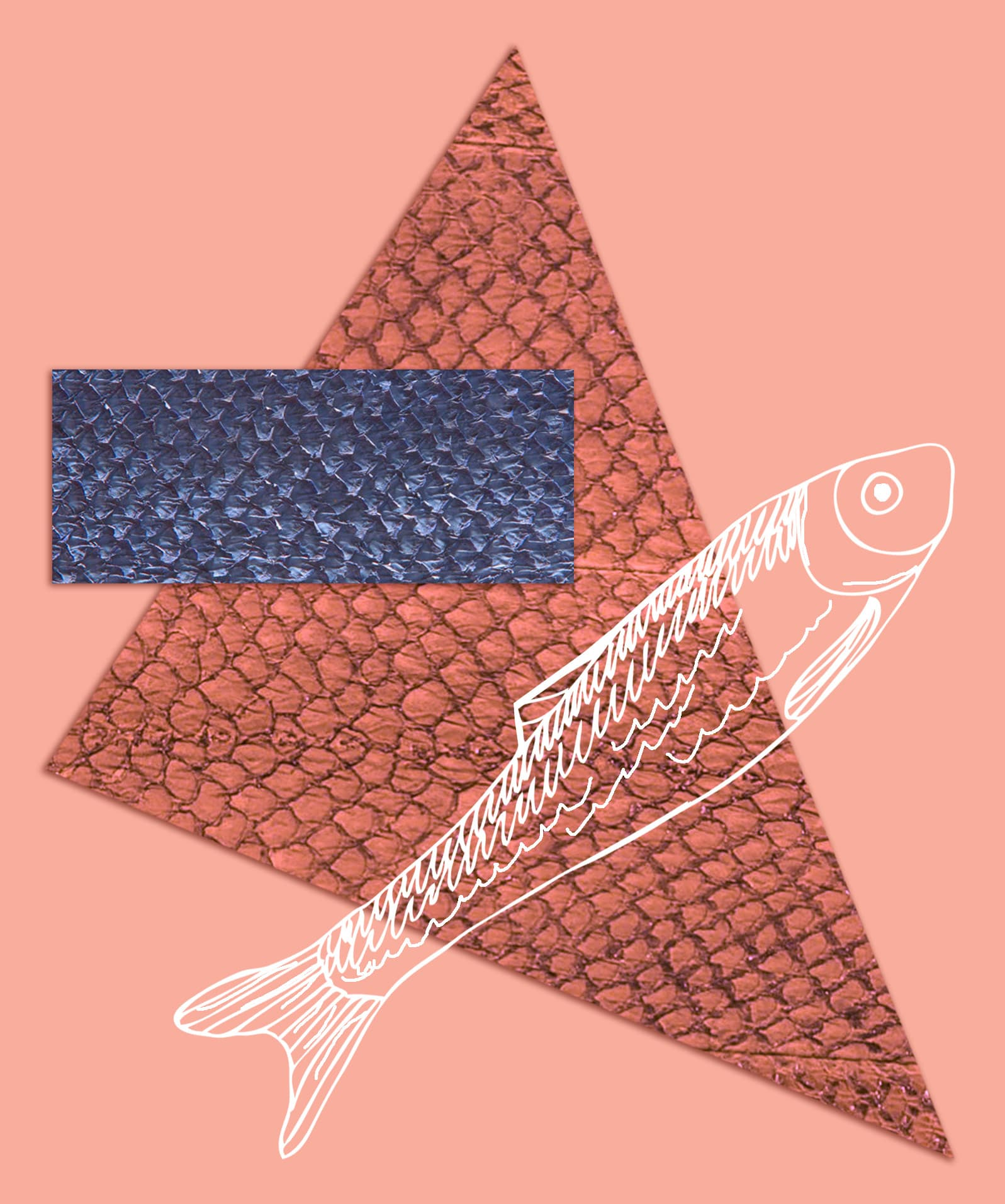 Fischleder aus Lachshaut