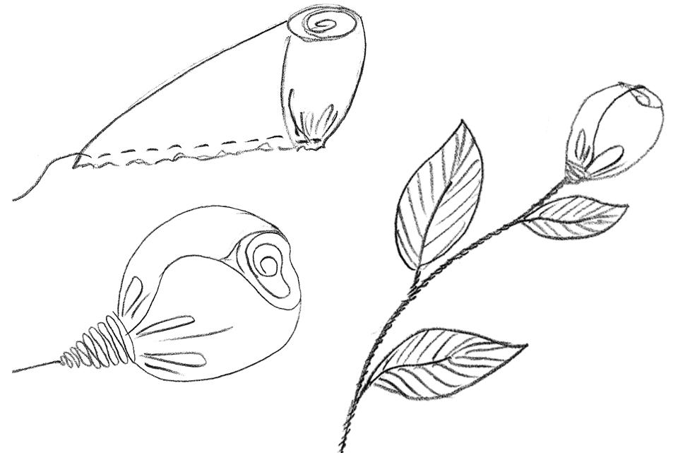 Zu sehen sind Röschen oder Knospen als Zeichnungsvorlage für Handstickerei.