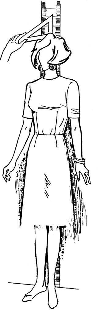 Eine DOB Zeichnung zeigt das Maßnehmen der Körperhöhe.