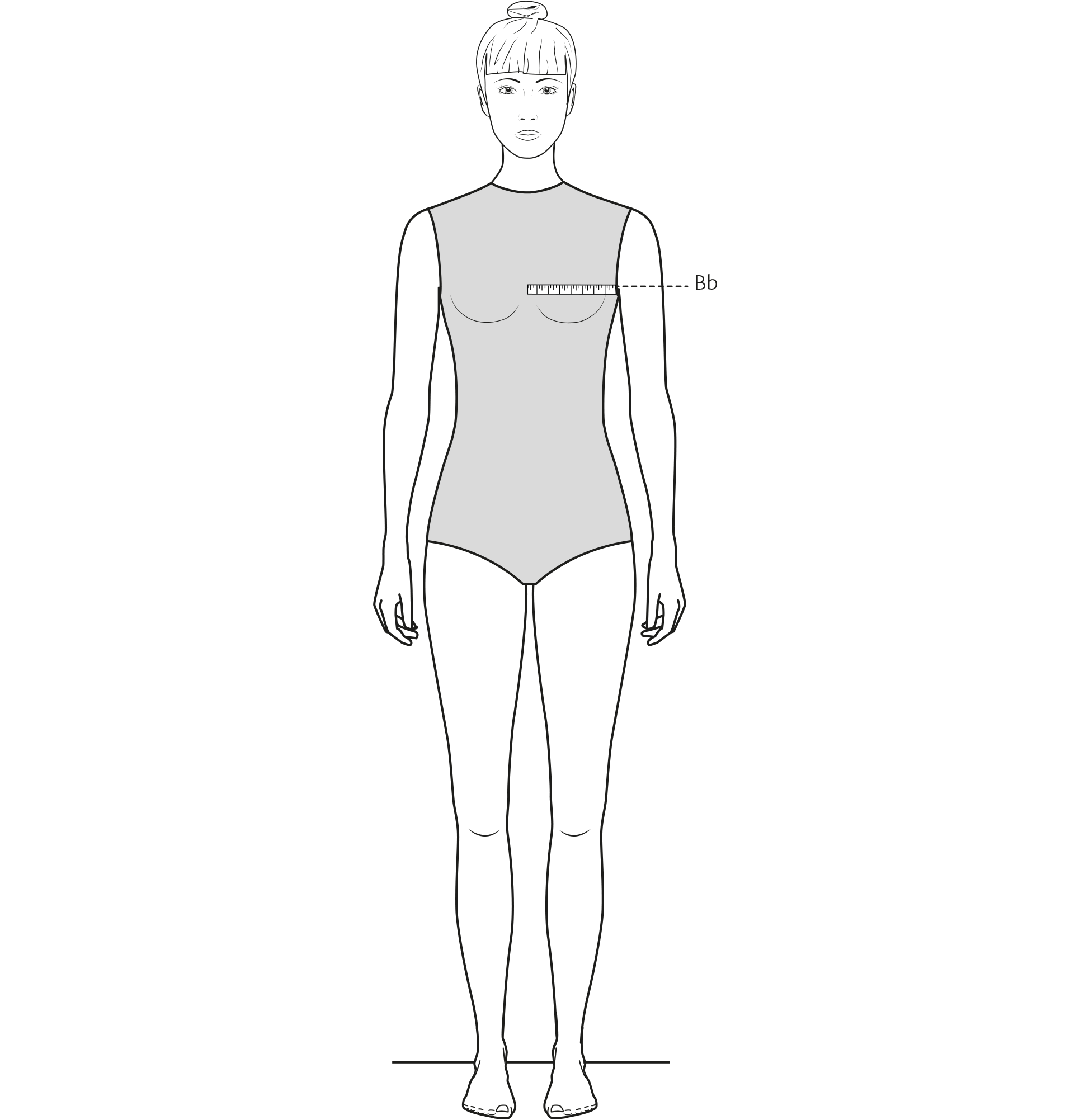 Diese Zeichnung zeigt das Messen der Brustbreite.