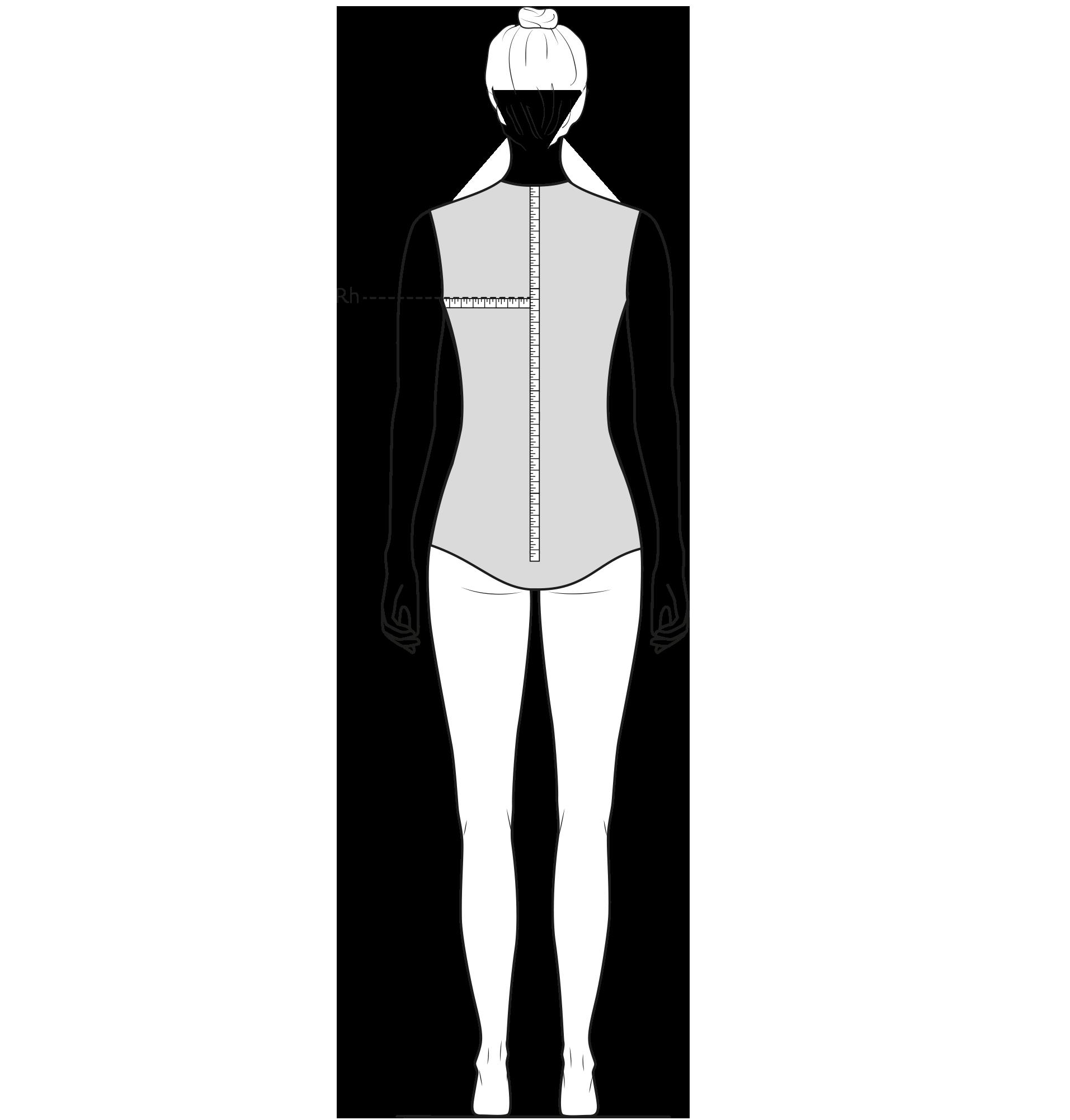 Diese Zeichnung zeigt das Messen der Rückenhöhe.