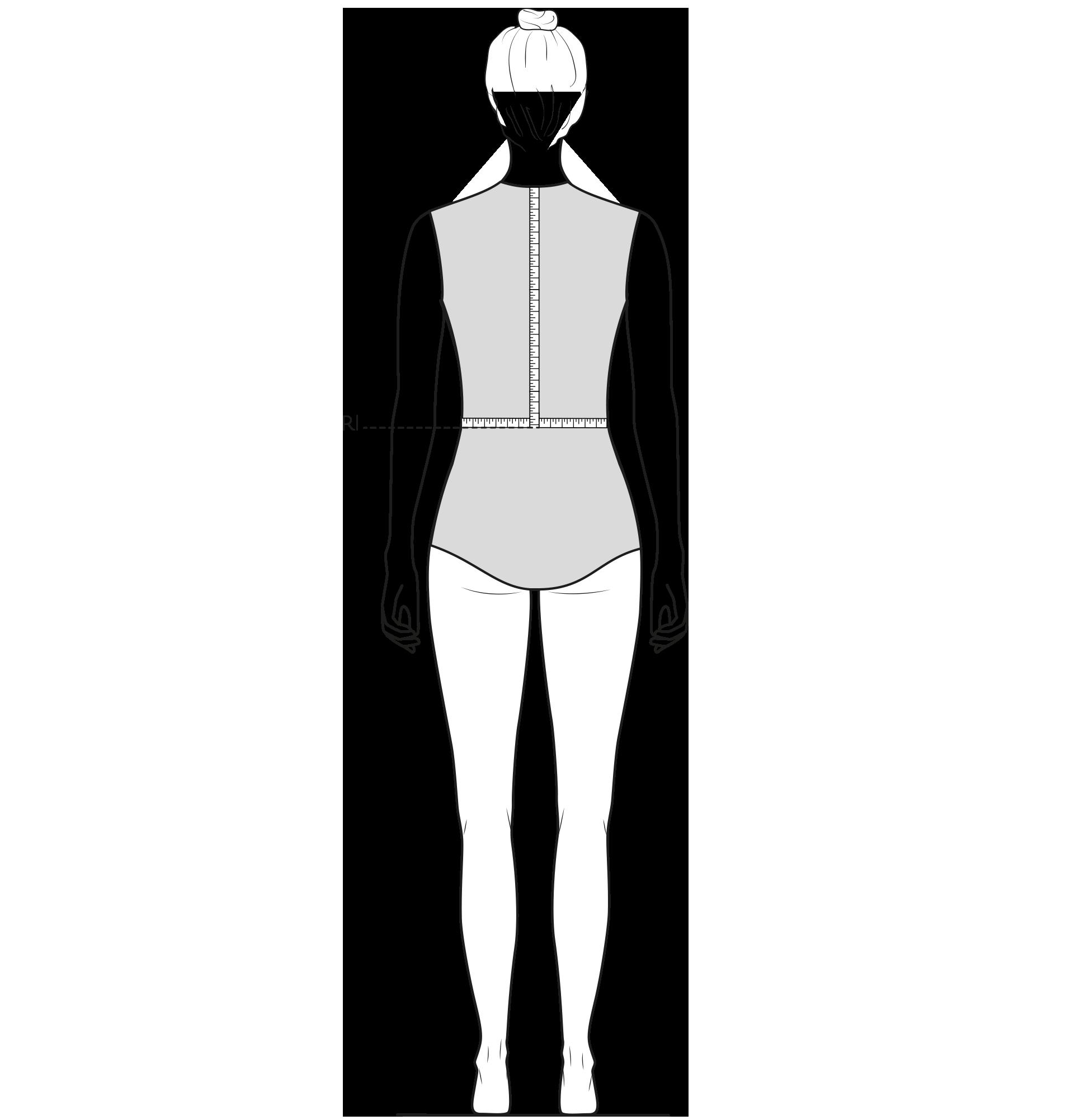 Diese Zeichnung zeigt das Messen der Rückenlänge..